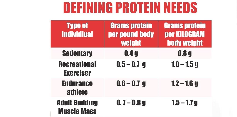 Protein Needs