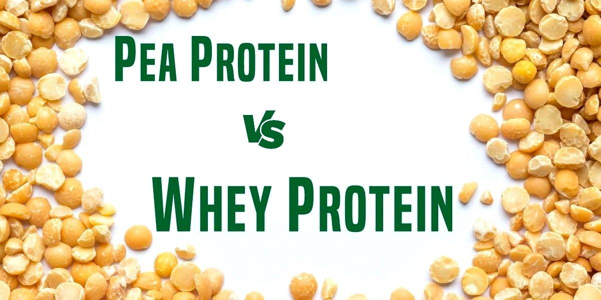 Pea Protein vs Whey